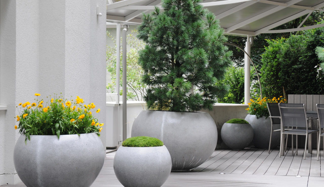 116 m u s n v n bi t th c o t o b o for Open terrace garden designs